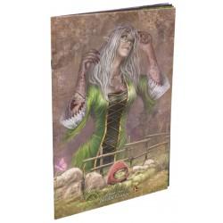 Artbook d'Anoë